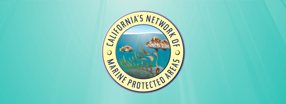 California's Network of Marine Protected Areas