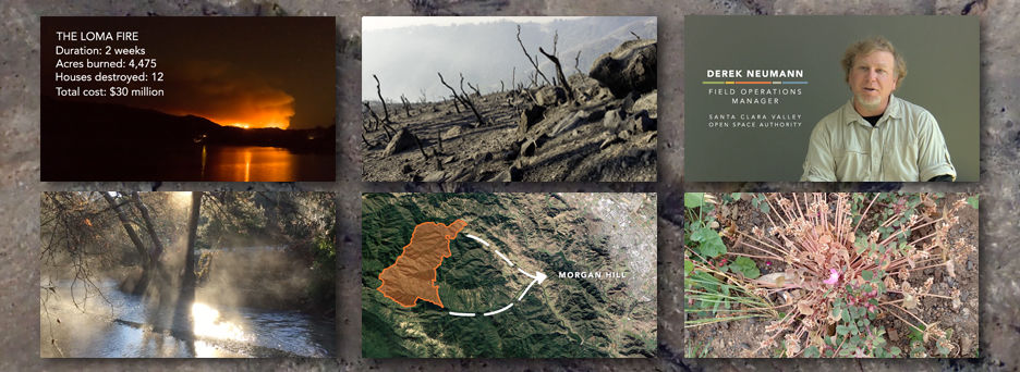 The Loma Fire: One Year Later